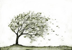 albero-nella-tempesta-di-autunno-7071048[1]