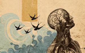 darwinismo-neurale[1]